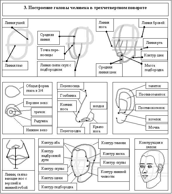 контурный рисунок головы